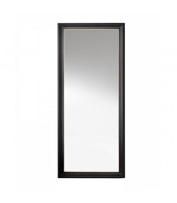 Mirror K10504